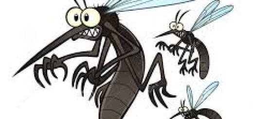 scared mosquito cartoon
